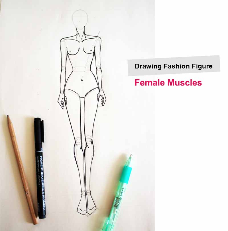 Fashion Figure Drawing Without Guideline Fashion Courses For Begineers