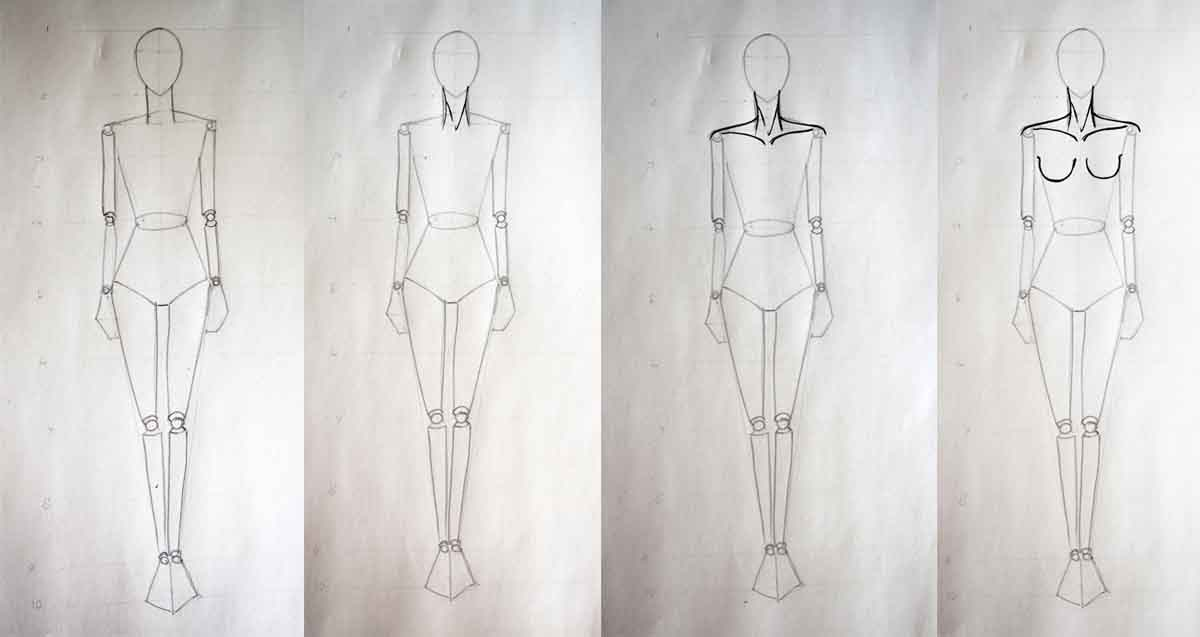 Fashion design course - Drawing muscles
